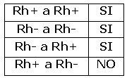 grupos rh+rh-
