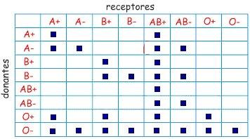 grupos transf 2