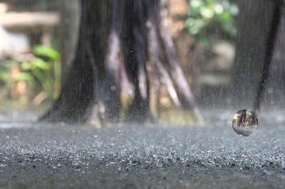 Lluvia en la tierra